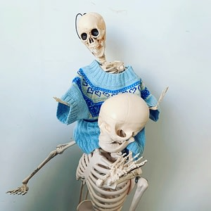Body Mind Co skeleton